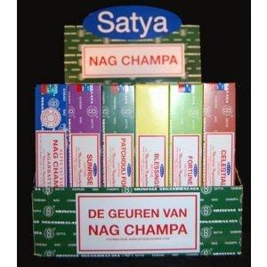 Kiany.nl - Satya Wierook