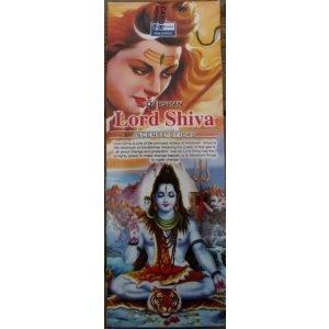 Kiany.nl - Lord Shiva Darshan wierook